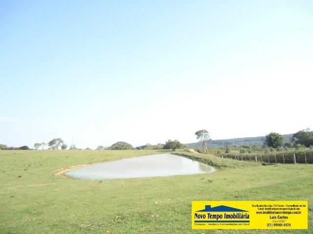 74 hectares em Encruzilhada doSul