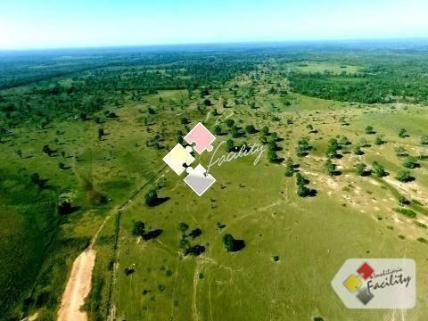 Fazenda rural à venda, zona rural, poconé - . - Foto 5