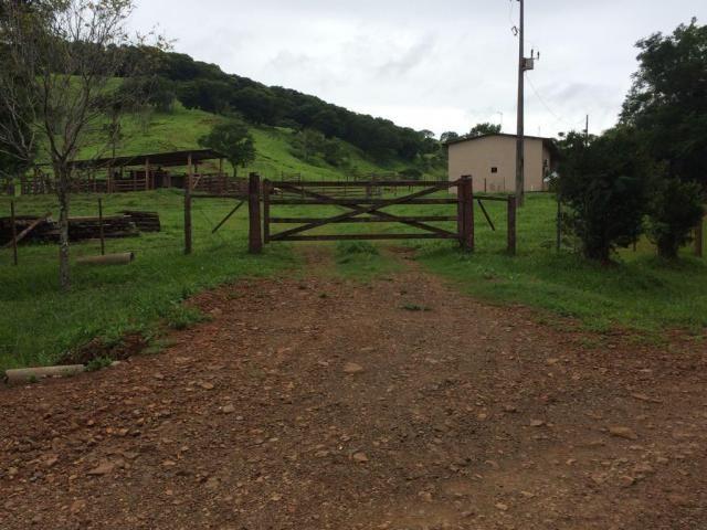 Fazenda rural à venda em Roncador - PR - 52 alqueires. - Foto 5