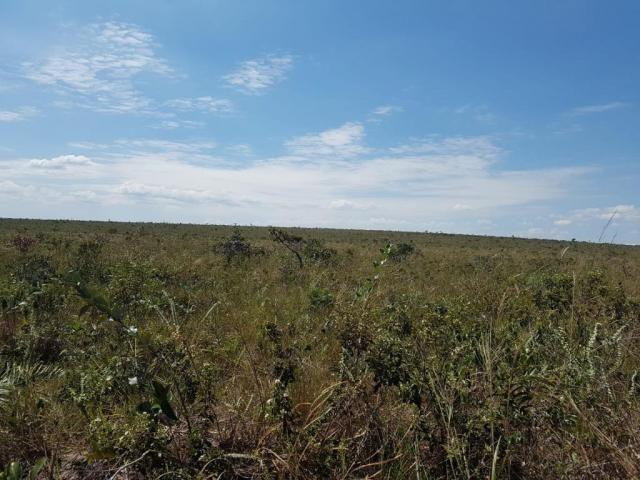 Fazenda à venda, permuta 14520000 m² por R$ 6.000.000 - Zona Rural - Pontes e Lacerda/MT - Foto 6