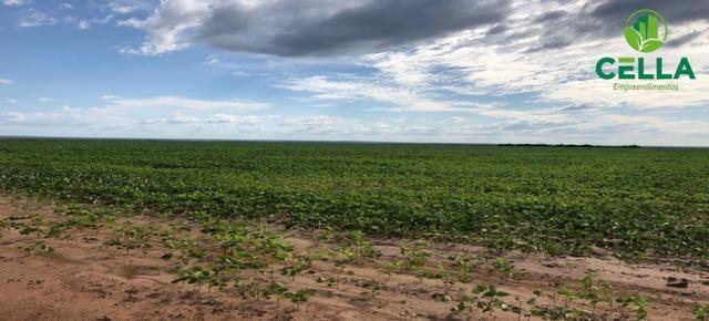 Fazenda / 4.639 ha (958 Alq.) / Balsas / Maranhão - Foto 2