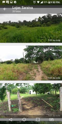 Venda fazenda - Foto 5