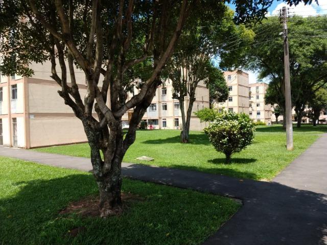 Apartamento 2Q Condomínio Rondon - Foto 3