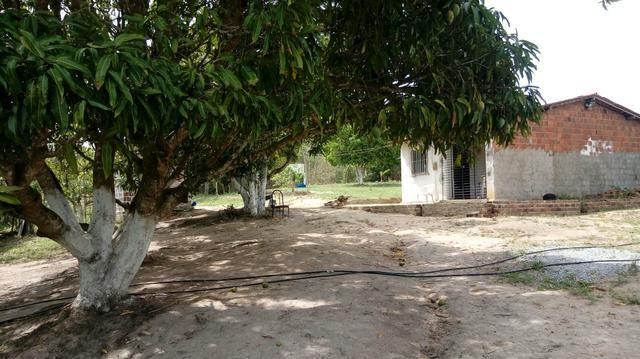 Sitio , fazenda, chácara - Foto 8