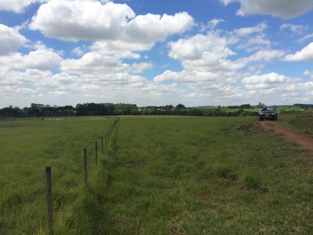 Fazenda 33 Alqueires, Região de Tatuí-Sp - Foto 2
