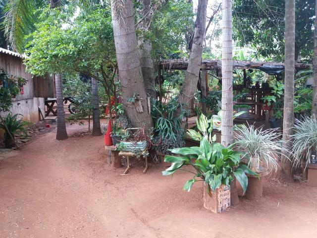 Vendo chácara de 7 hectares com 2 casas 1 cozinha caipira com fogão de lenha - Foto 10