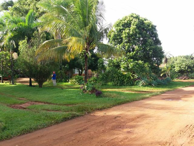 Vendo chácara de 7 hectares com 2 casas 1 cozinha caipira com fogão de lenha - Foto 11