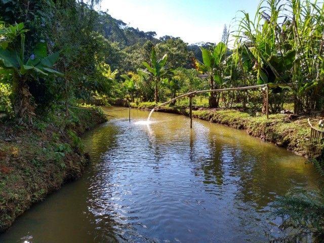 Chácara com casa e riacho na região Serrana  - Foto 5