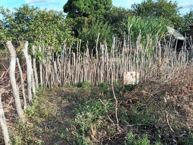 Vendo propriedade rural na Chapada Diamantina, Morro do Chapéu-Ba - Foto 6
