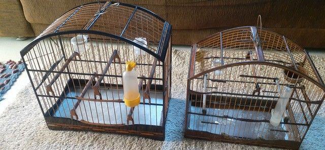 Vendo ou troco gaiolas usadas mas conservadas