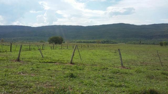 Fazenda 3288 ha terra Rosario Oeste MT braquearia 2020 cab boi R$ 6 mil reais p ha - Foto 5