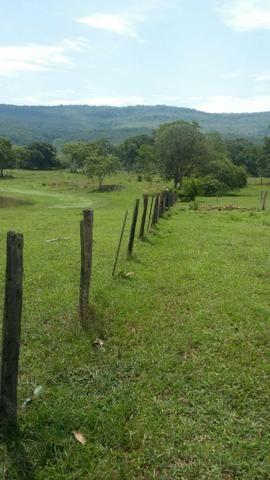 Fazenda 3288 ha terra Rosario Oeste MT braquearia 2020 cab boi R$ 6 mil reais p ha - Foto 4