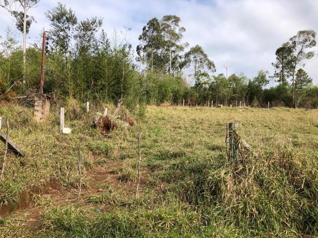 Terrenos em Taquara, 10x40 e 15x40. * - Foto 3