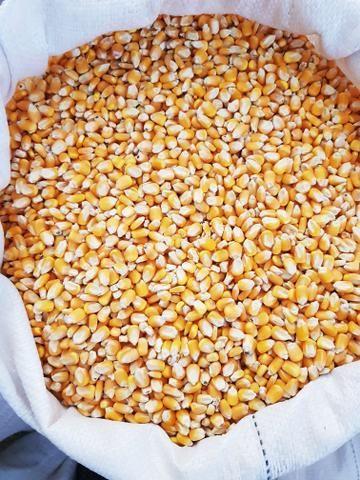 Mistão/milho/xerêm de milho/cuim/sal - Foto 4