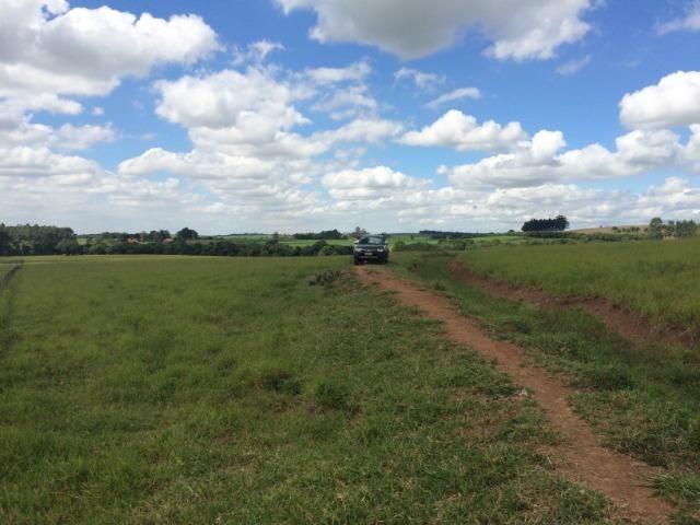 Fazenda 33 Alqueires, Região de Tatuí-Sp - Foto 3