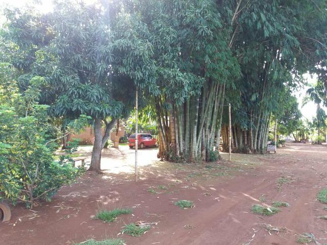 Vendo chácara de 7 hectares com 2 casas 1 cozinha caipira com fogão de lenha