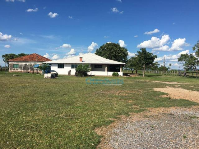 Fazenda a venda - área rural - Foto 6