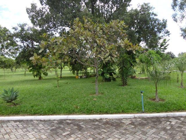 Terreno c/ 3.000 m2 Condomínio de Chácaras em Goiânia! - Foto 8