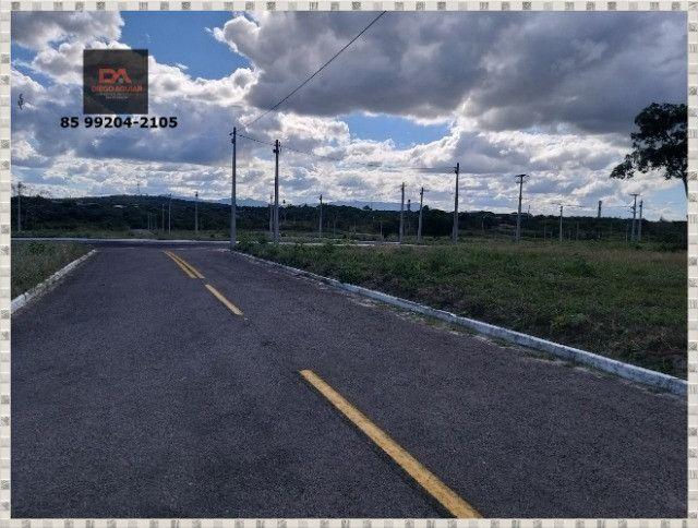 Lotes Terras Horizonte &¨%$ - Foto 13