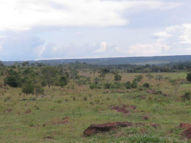 Oportunidade fazenda em Juara MT com 2.627,69 hectares