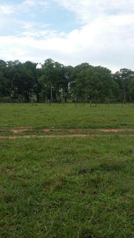 Fazenda 3288 ha terra Rosario Oeste MT braquearia 2020 cab boi R$ 6 mil reais p ha - Foto 3