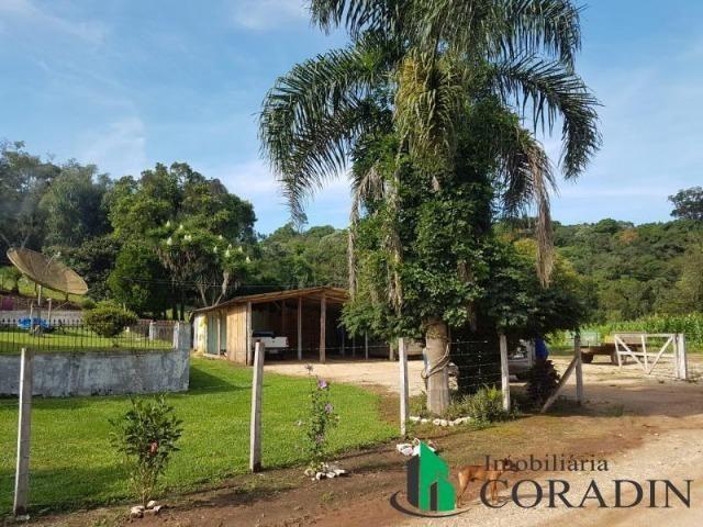 Linda Chácara em Bocaiuva do Sul - Foto 16