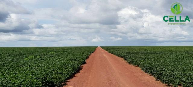 Fazenda / 14.600 ha (3.016 Alq.) / Buriticupu / Maranhão