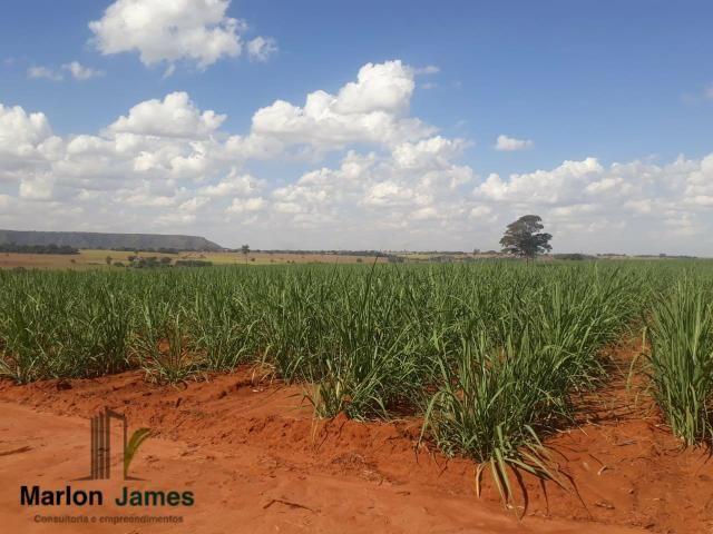 Fazenda para Plantio em Quirinópolis-GO! - Foto 12