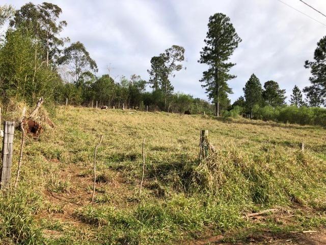 Terrenos em Taquara, 10x40 e 15x40. * - Foto 2