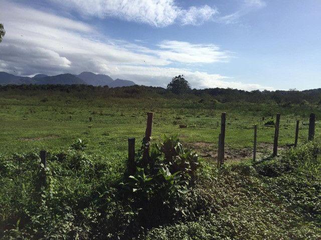 Área Industrial / Rural na Rodovia do Arroz com 22.760 m² - Foto 4