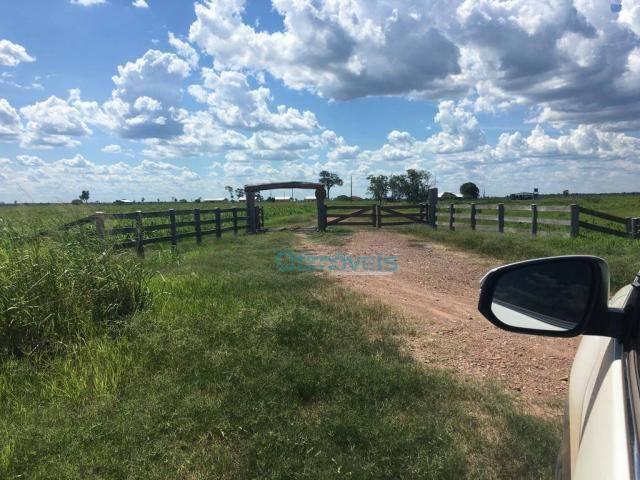 Fazenda a venda - área rural - Foto 20