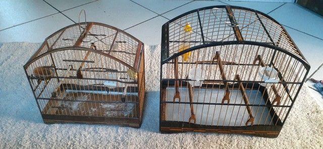 Vendo ou troco gaiolas usadas mas conservadas  - Foto 4