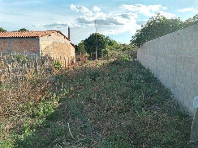Vendo propriedade rural na Chapada Diamantina, Morro do Chapéu-Ba - Foto 4