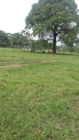Fazenda 3288 ha terra Rosario Oeste MT braquearia 2020 cab boi R$ 6 mil reais p ha - Foto 6