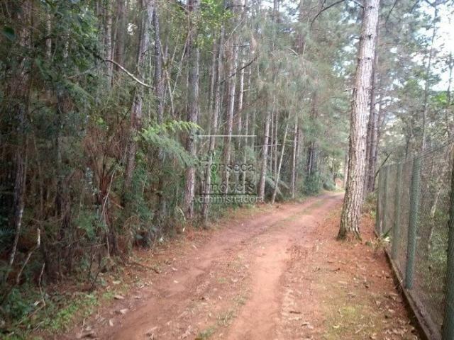 Terreno à venda em Fazenda inglesa, Petrópolis cod:3542 - Foto 3