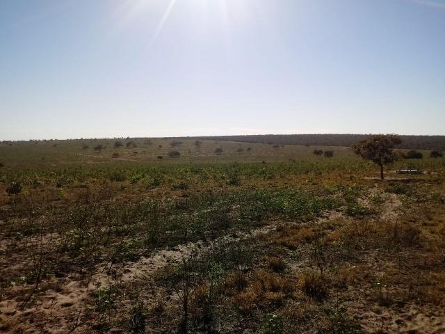 Fazenda para Pecuária 1.940 hectares na Estrada do Manso 50 km Cuiabá - Foto 9