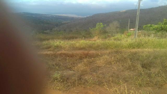 Terreno perto do Vitorino município de riacho das Almas - Foto 4
