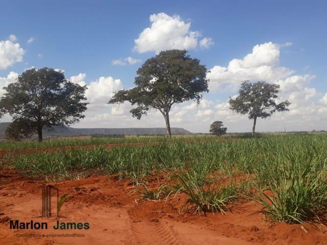 Fazenda para Plantio em Quirinópolis-GO! - Foto 11