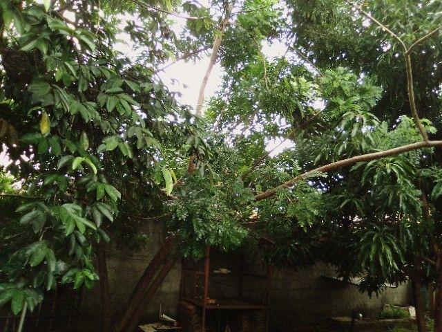 Casa em Horizonte ( preço 45.000 ) - Foto 15