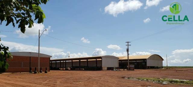 Fazenda / 14.600 ha (3.016 Alq.) / Buriticupu / Maranhão - Foto 4
