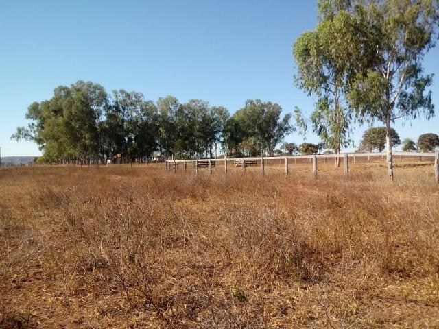 Fazenda para Pecuária 1.940 hectares na Estrada do Manso 50 km Cuiabá - Foto 20