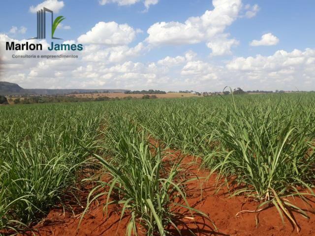 Fazenda para Plantio em Quirinópolis-GO! - Foto 10