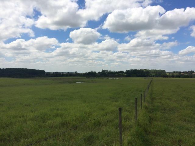 Fazenda 33 Alqueires, Região de Tatuí-Sp