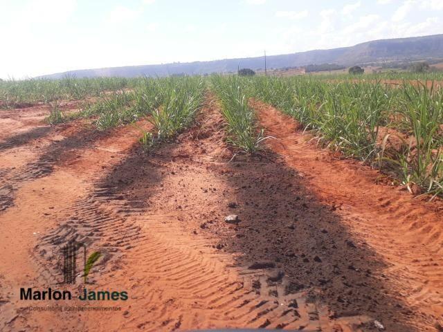 Fazenda para Plantio em Quirinópolis-GO! - Foto 20