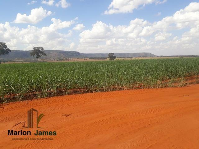 Fazenda para Plantio em Quirinópolis-GO! - Foto 13