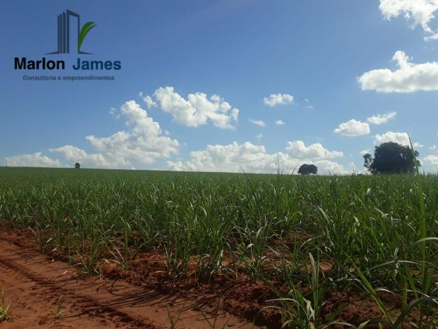 Fazenda para Plantio em Quirinópolis-GO! - Foto 2