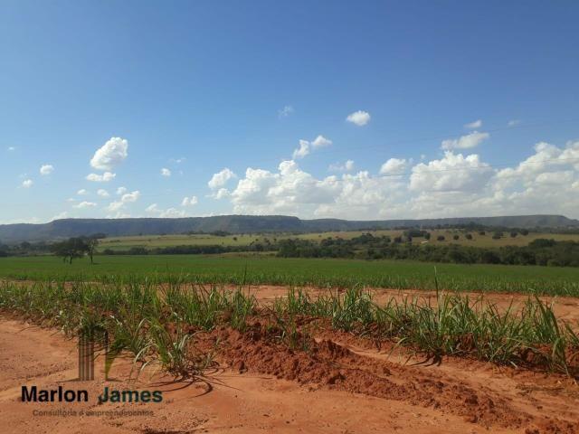 Fazenda para Plantio em Quirinópolis-GO! - Foto 17