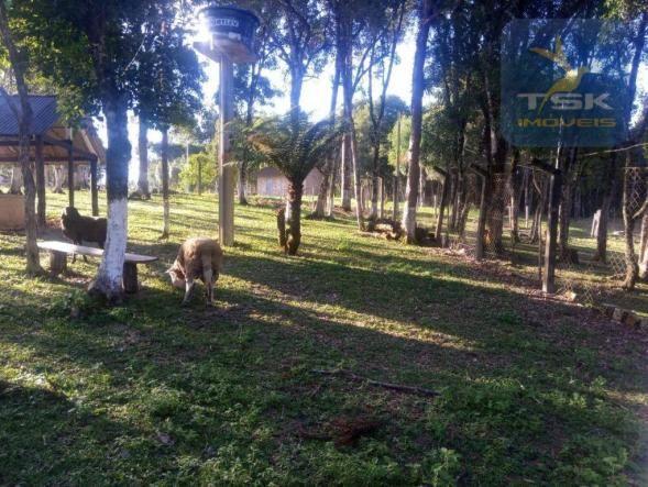 CH0386 - Chácara à venda, 6050 m² por R$ 130.000 - Zona Rural - Quitandinha/PR - Foto 8