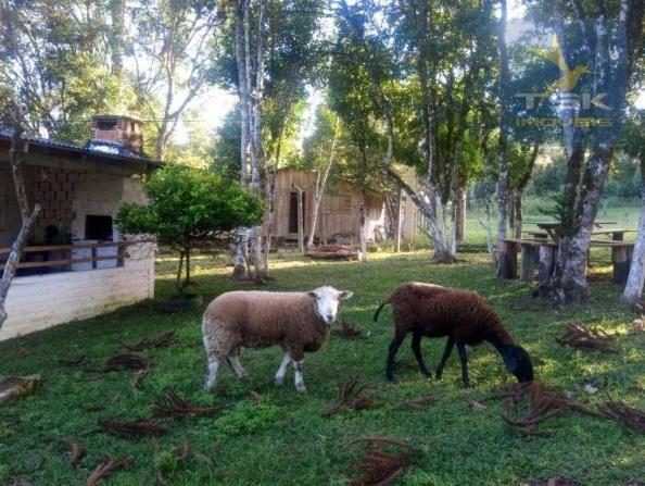 CH0386 - Chácara à venda, 6050 m² por R$ 130.000 - Zona Rural - Quitandinha/PR - Foto 2