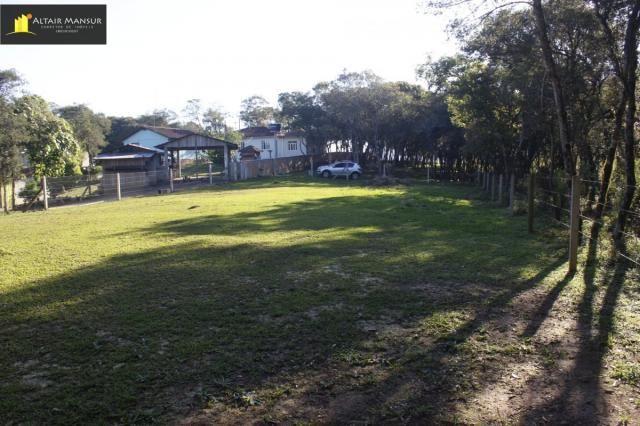 Terreno para Venda em Lagoa Tijucas do Sul-PR - Foto 14